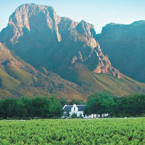 winelands 1b