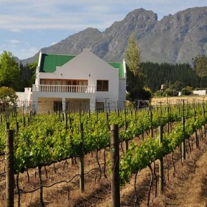 winelands 4b